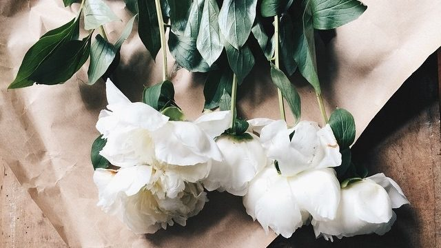 白いお花のブーケの画像