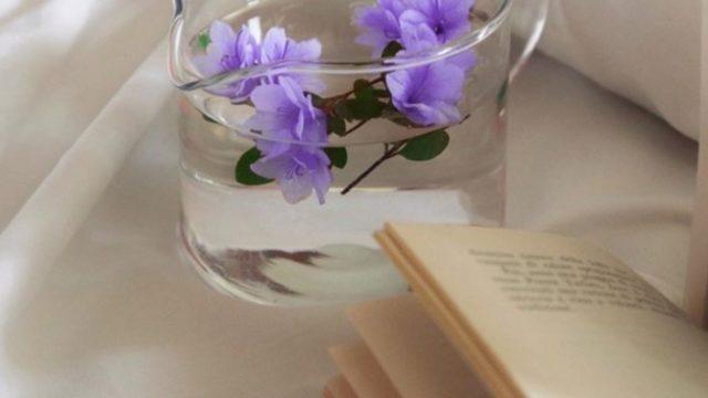 紫のお花の画像